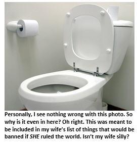 If I ruled the world - toilet
