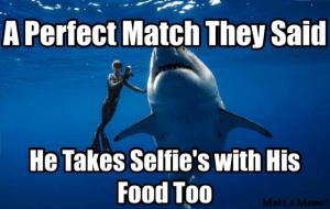#shark#Valentine'sDay