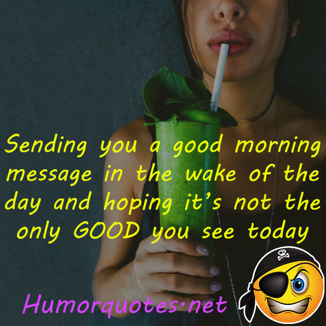 humor have a nice day messages