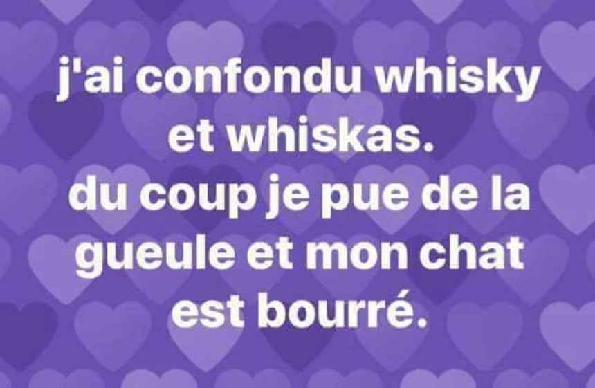 J'ai confondu whisky et whiskas
