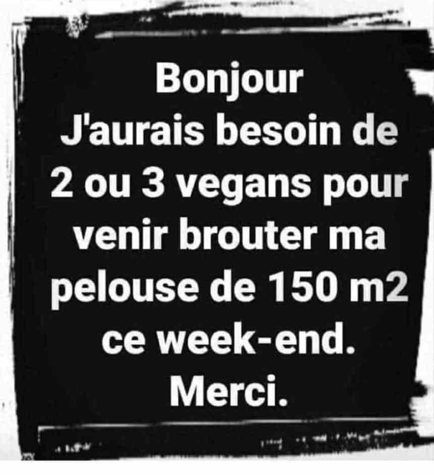 Jaurais-besoin-de-2-ou-3-vegans-pour-ven