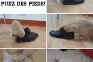 Comment savoir si vous puez des pieds !
