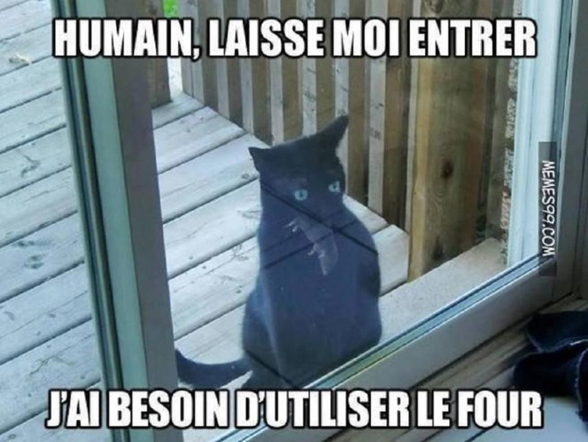 Humain, laisse moi entrer