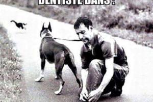 Rendez-vous chez le dentiste