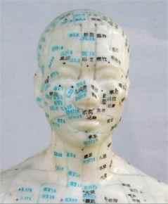 L'Art de l'Acupuncture IMG 2