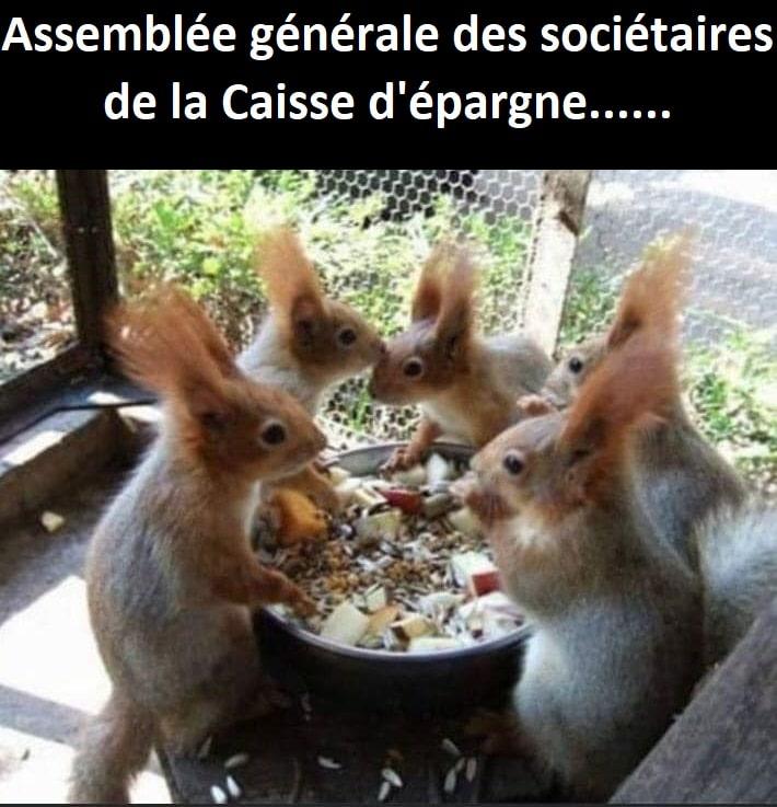 Assemblée générale des sociétaires de la Caisse d'épargne …