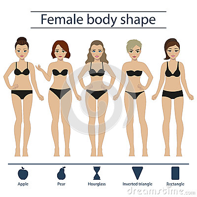 female-body-shape-set