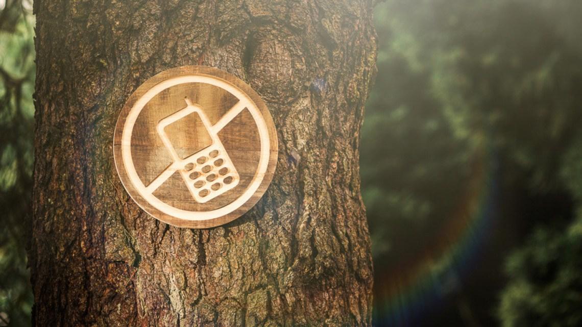 Digital Detox spécial portable : la cure tech-free pour retrouver ta coolitude