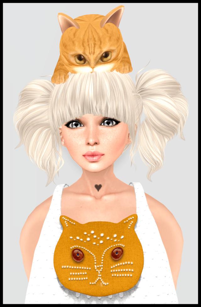 cat1_003
