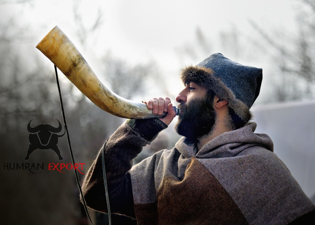 norse blowing horn