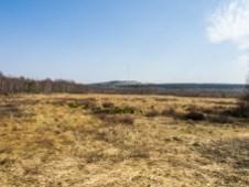 Blick auf den Heidelstein am Aussichtsturm im Roten Moor