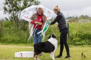 Hundasýning 24.07.2016 í Víðidalnum 1021