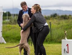 Hundasýning 24.07.2016 í Víðidalnum 861