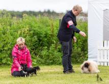 Hundasýning 24.07.2016 í Víðidalnum 926