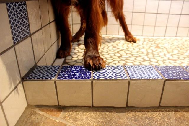 Hundefreundliches Badezimmer Badezimmer Fliesen Badezimmerfliesen