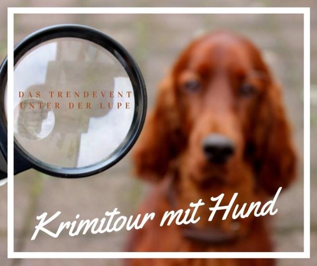 Krimitour mit Hund Erfahrungsbericht