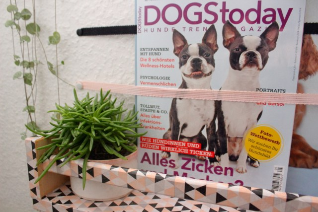 diy-hundemagazin-regal-ikea-hack