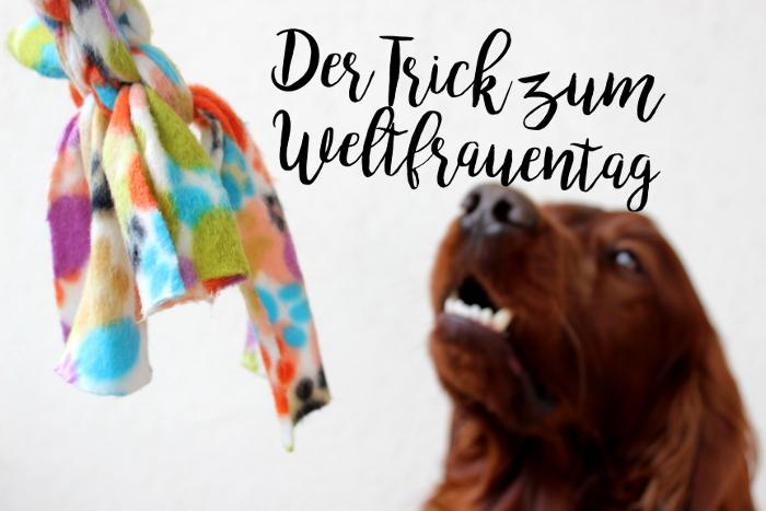Der Trick, den jede Frau mit ihrem Hund können sollte