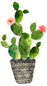 Interior Kaktus