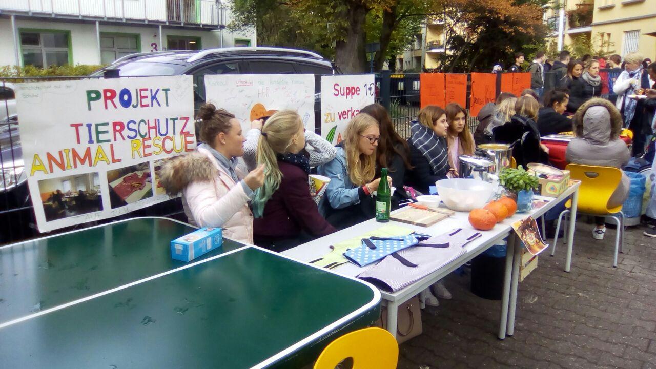 Schüler nähen Hundemäntel für Russland
