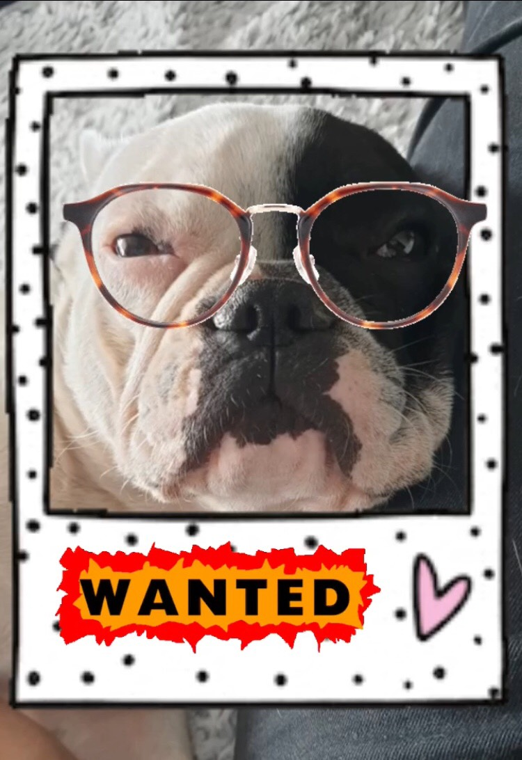 Spendenkalender: We want yoooouuuuuu!