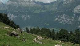 Wanderung Kleinberg