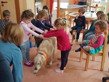 20180503 103220 - Therapiehunde-Teamausbildung