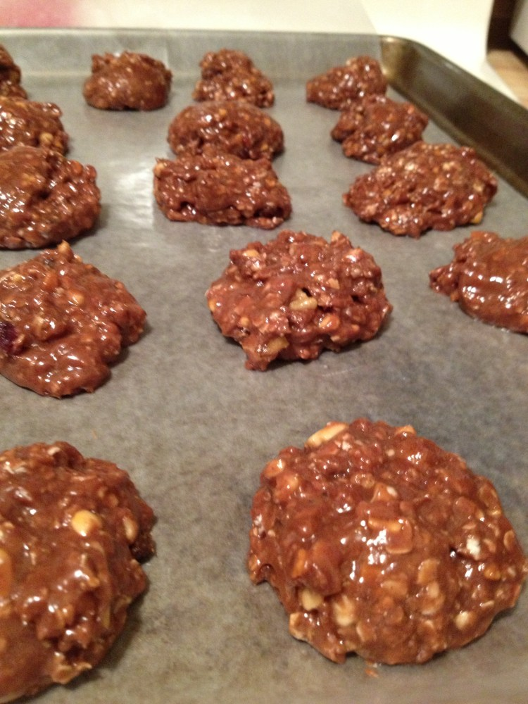 Chocolate Protein Rounds [No Baking Required] (4/6)