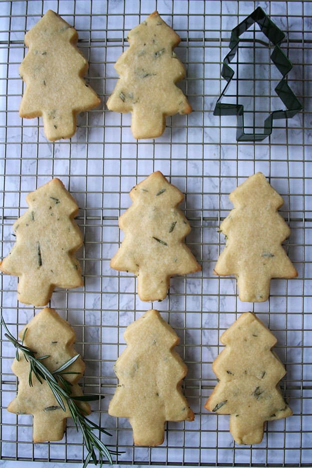 Christmas tree shaped shortbread cookies with flecks of rosemary