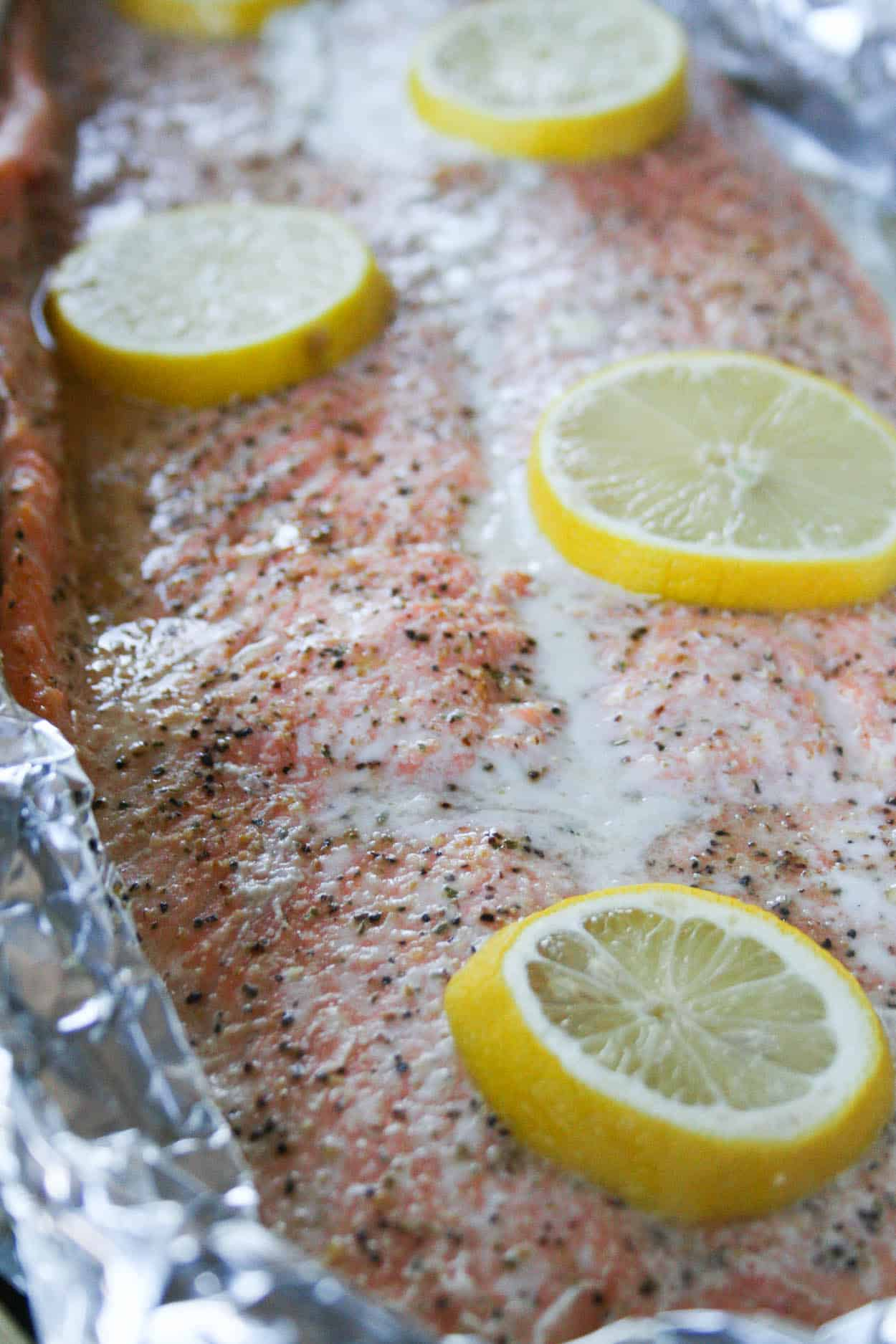 Salmon In Foil In Toaster Oven Whole30 Roasted Lemon Salmon In Foil Hungry  By Nature