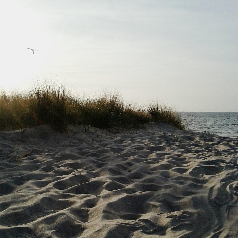Mal kurz an die Ostsee