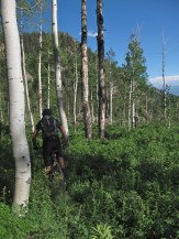 No trail on No name trail, Glennwood Springs