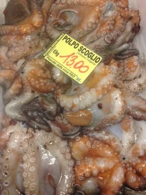 HL_Alghero_octopuss
