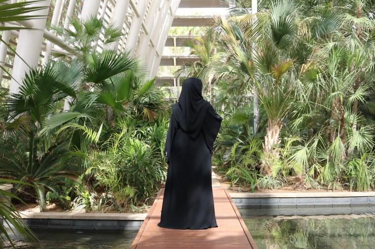umm-al-emarat-abu-dhabi-guide