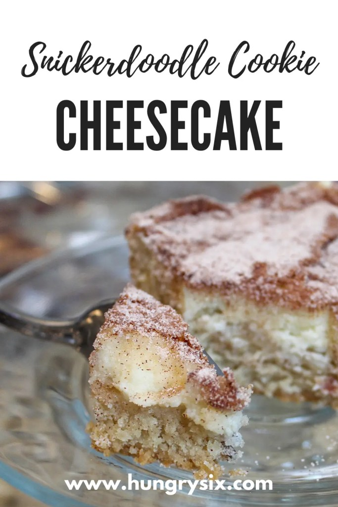 Snickerdoodle Cookie Cheesecake Pin