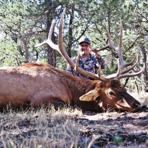 New Mexico Elk Hunt Giveaway