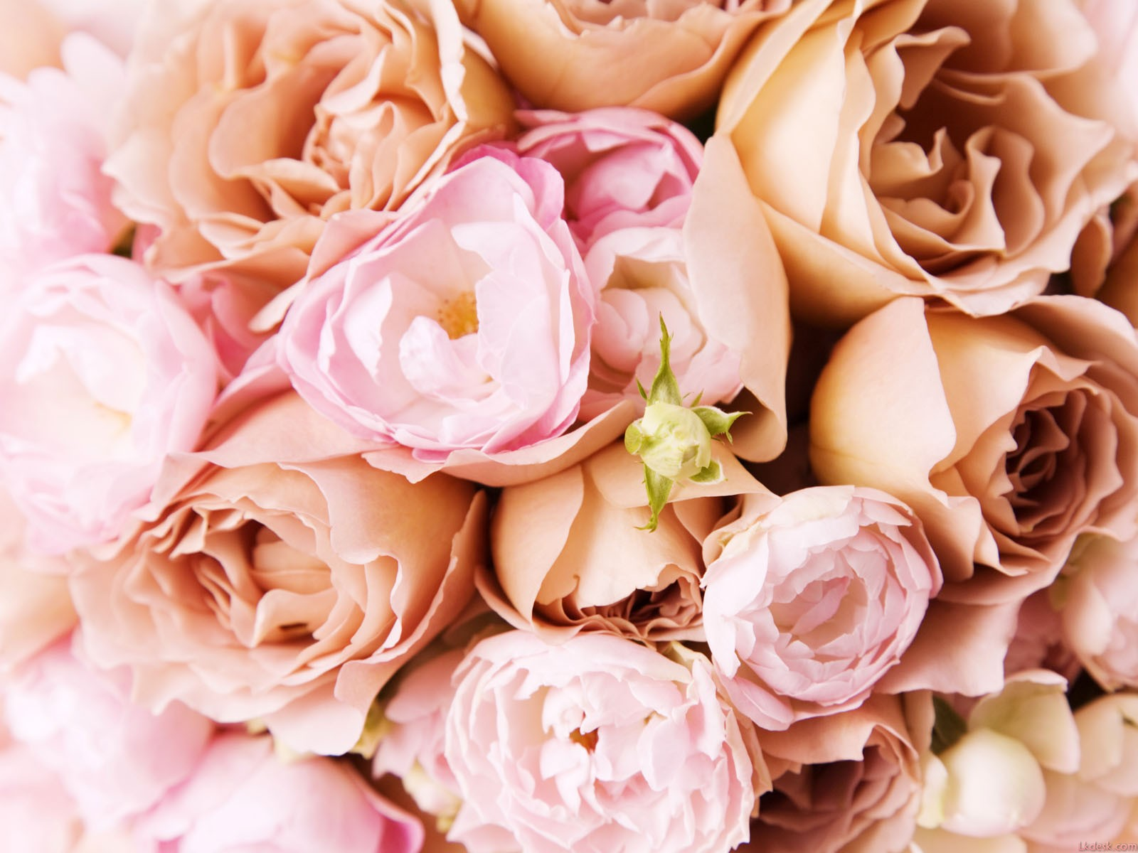 Finding A Florist For Your Bridal Bouquet