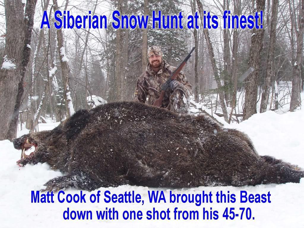 Russian Wild Boar Hunting Adventure in the USA Michigan
