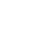 New York City Democratic Socialist Logo Logo