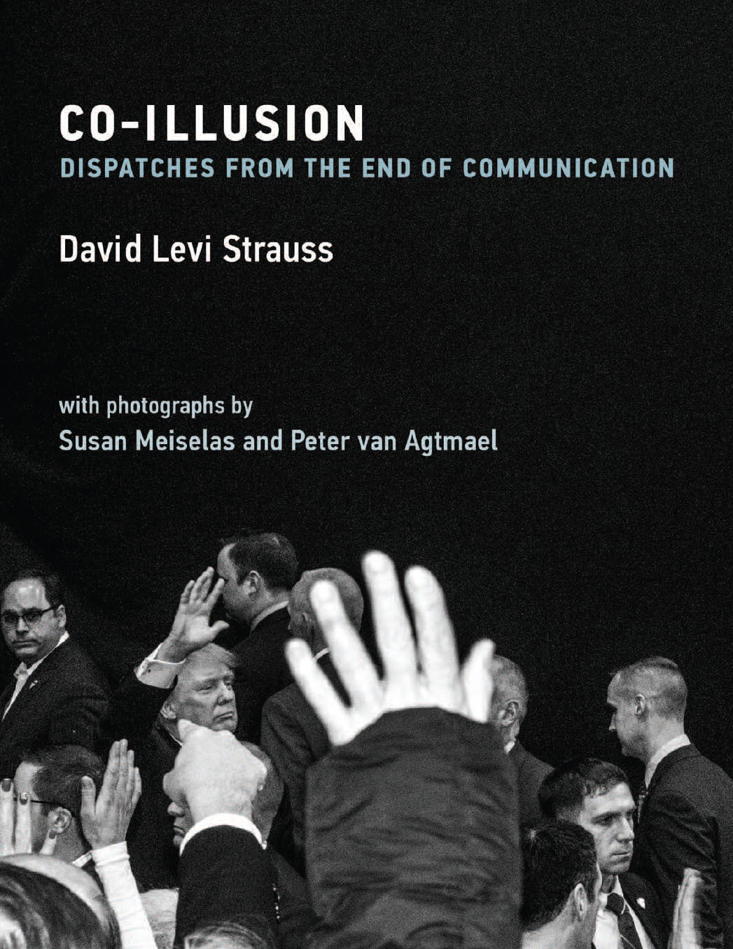 David-Levi-Strauss_book-cover
