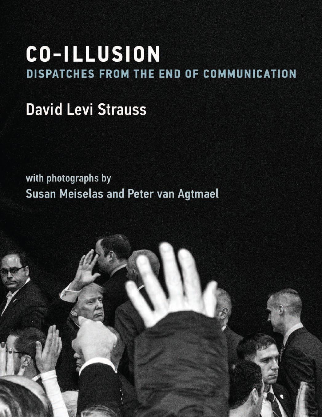 David-Levi-Strauss_book-cover