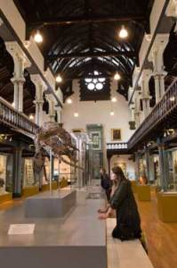 15+-+172+Comms+Office+Hunterian+museum+0041