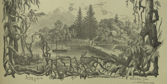 Residence of A.W. Scott circa 1858-1861 from the font cover of Volume 2 of the Australian Lepidoptera published 1890.