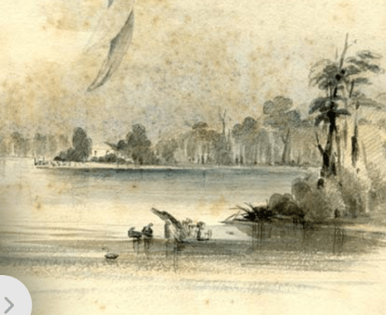 Detail from Original Plate XXXIX (39) showing possible site of Scott's Home in background (Courtesy of the Australian Museum)