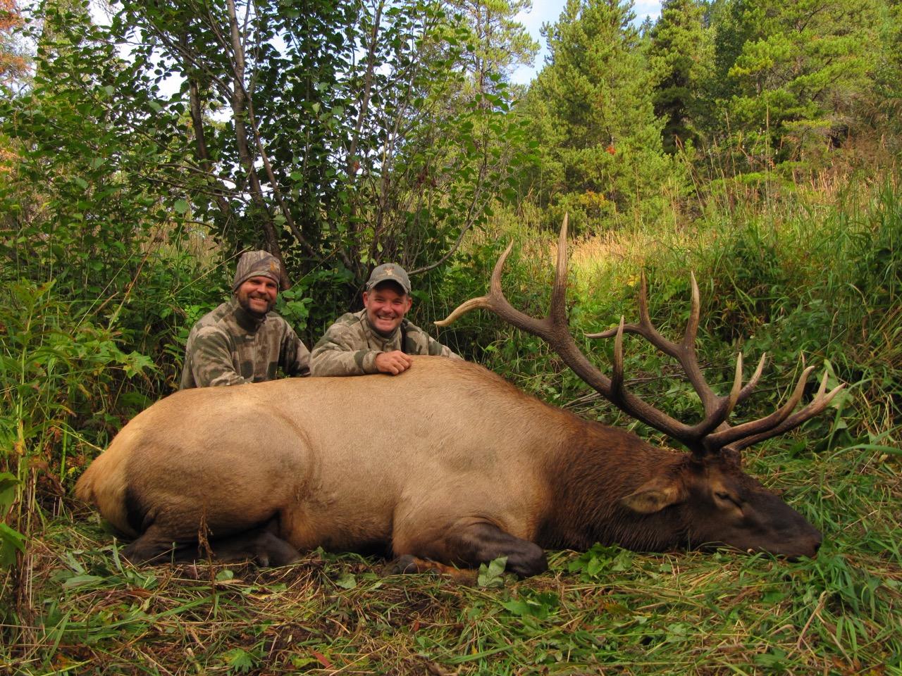 Photos Amp Videos Hunt Fgs Bc Hunting Guides Moose