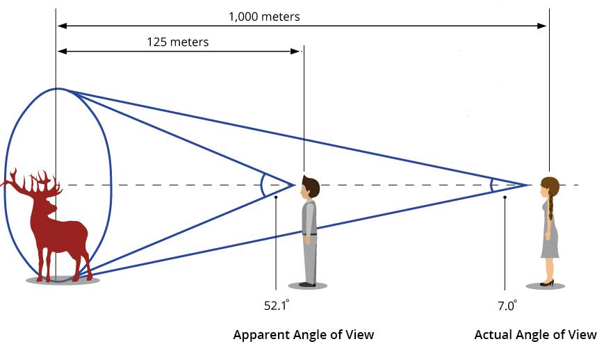 Binoculars Angle of View