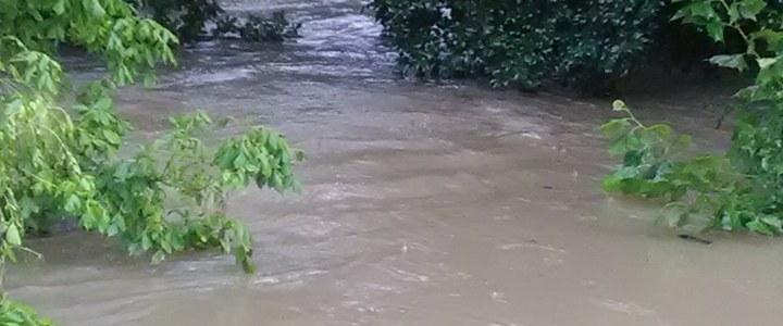 Stewart's Creek
