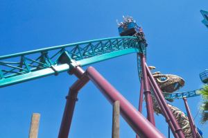What to do in Tampa with Kids? Go to Busch Gardens...and much more. www.huntingforrubies.com