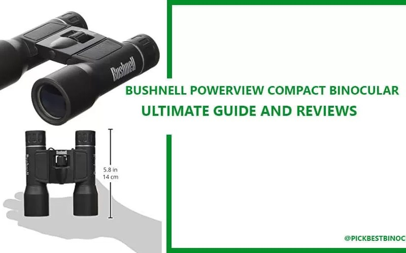Bushnell PowerView Compact Folding Binocular Review