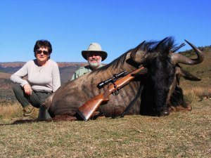 Hunting blue wildebeest South Africa with Mkulu African Hunting Safaris